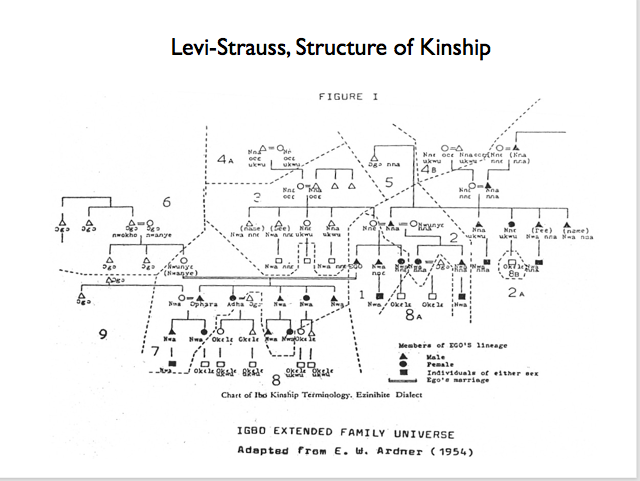 Structures Diagrams Rules And Flows Understanding Society